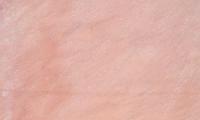 Clover Quartzite